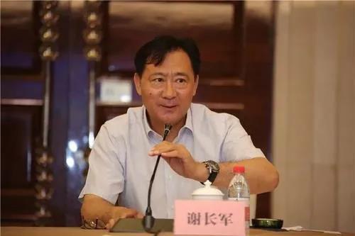 原国电集团副总经理谢长军涉嫌严重违纪违法  接受中央纪委国家监委纪律审查和监察调查